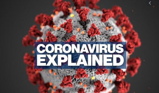 'COVID-19 Infects Intestines, Kidneys And Other Organs'-Study