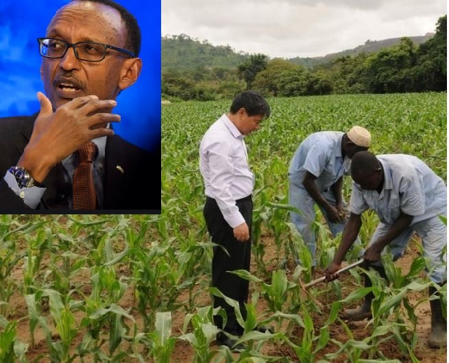 President Kagame Deports 18 Chinese 'Investors' For Mistreating Rwandans