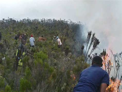 """Mount Kilimanjaro Fire Started Accidentally"" investigator."
