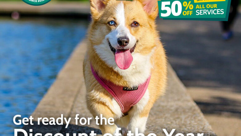 Kaisha Dog Trainers Uganda  Announce 50% X-mas Discount