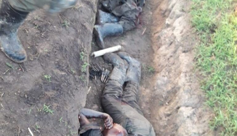 ADF Kills more than a Dozen in DR Congo.